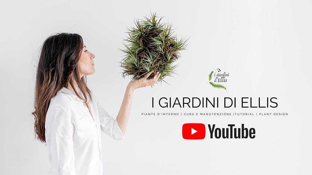 I Giardini di Ellis Canale YouTube