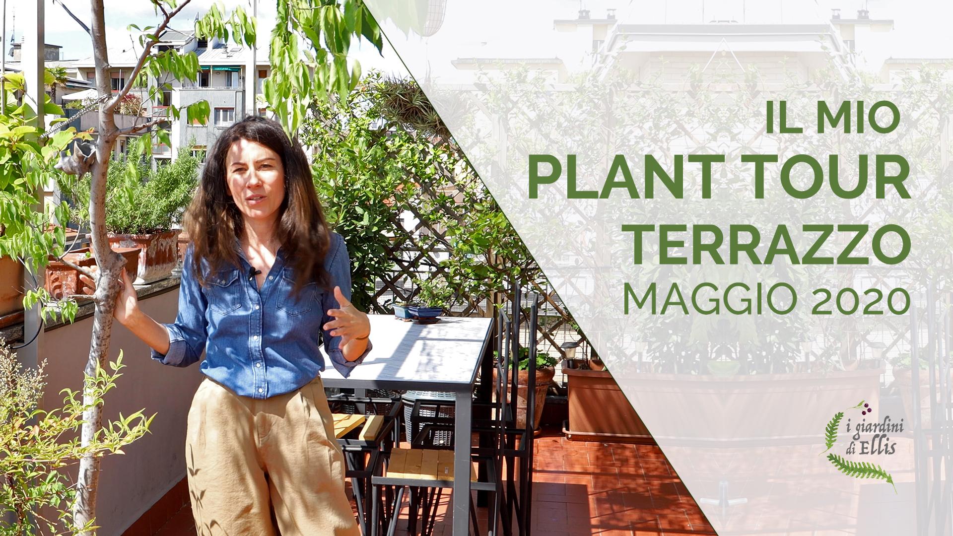 Plant Tour - I Giardini di Ellis