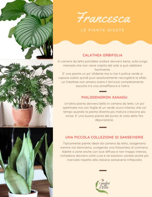 Consulenza Online - Plant Design - I Giardini di Ellis2