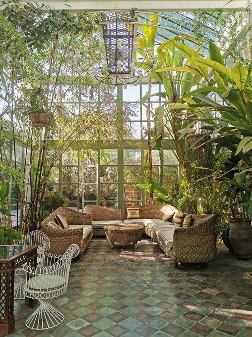 Non regalatemi piante - I Giardini di Ellis