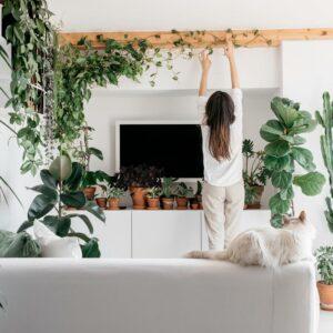 Alice Delgrosso Plant Designer e Terrarium Art - I Giardini di Ellis