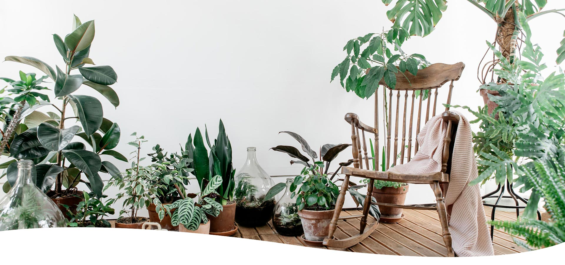 Progettazione Verde - I Giardini di Ellis