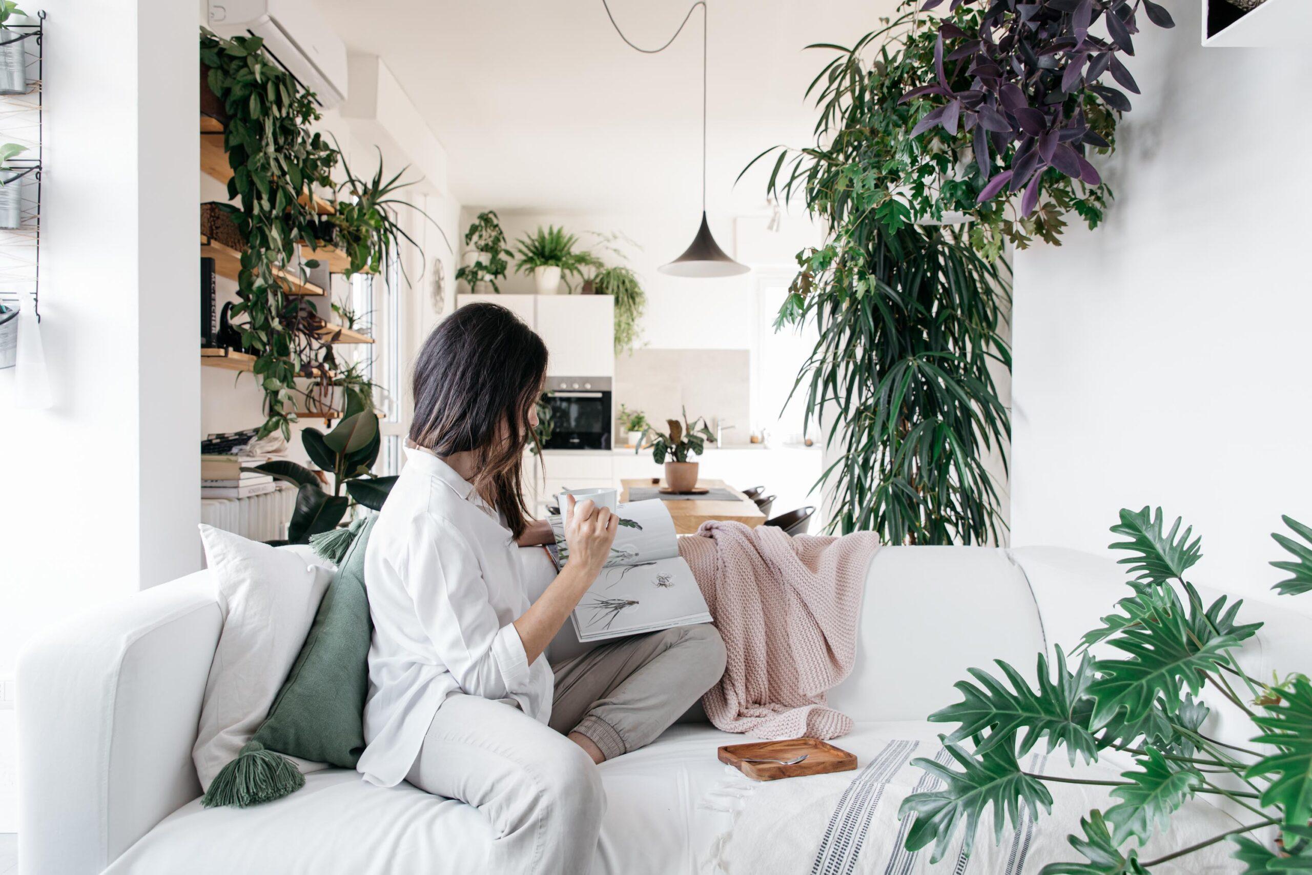 Lavori in casa con le piante_I Giardini di Ellis