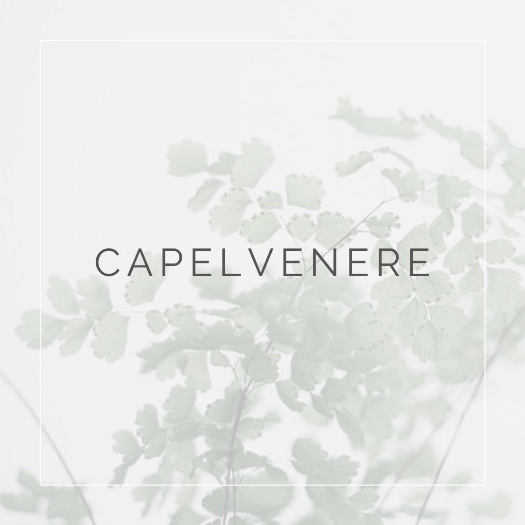 felce CAPELVENERE_ I Giardini di Ellis