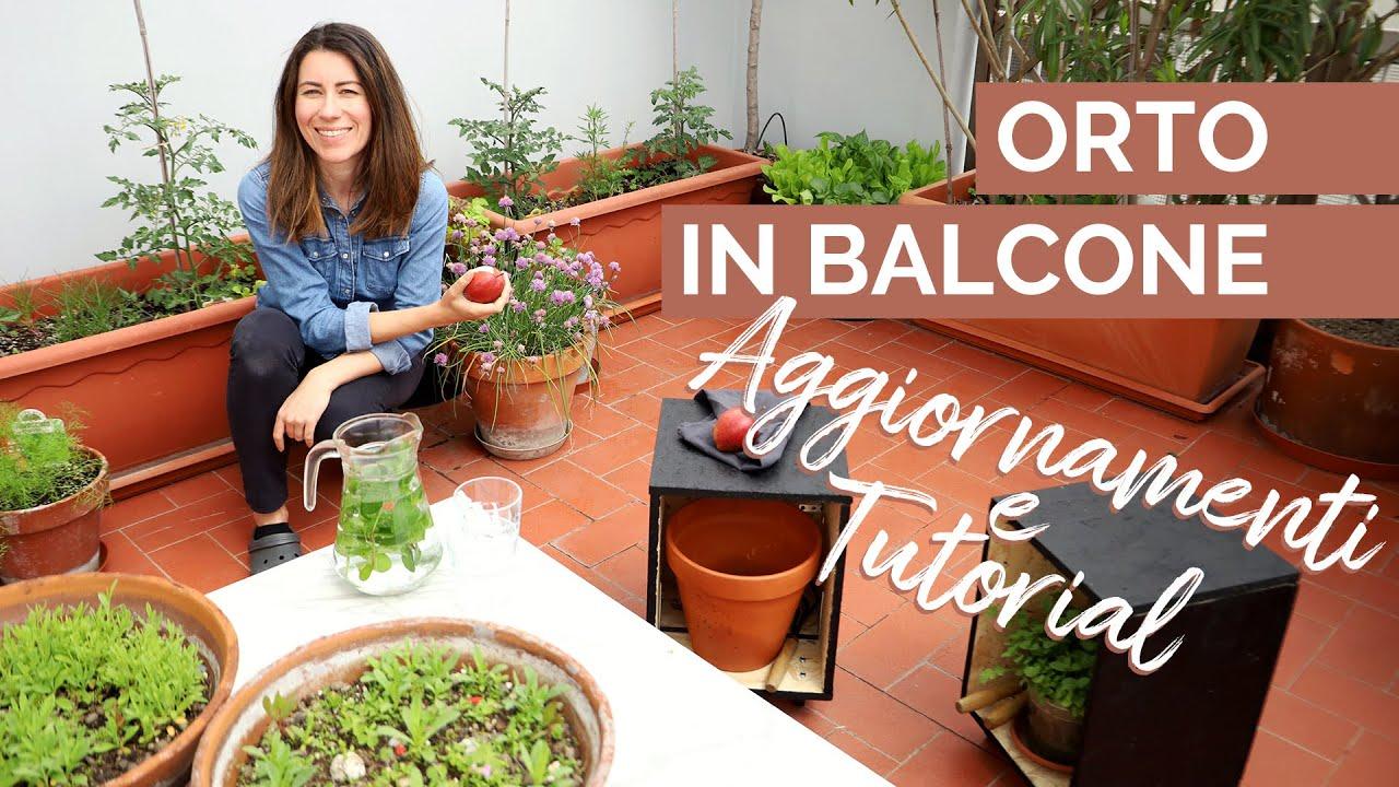 orto in balcone_I Giardini di Ellis