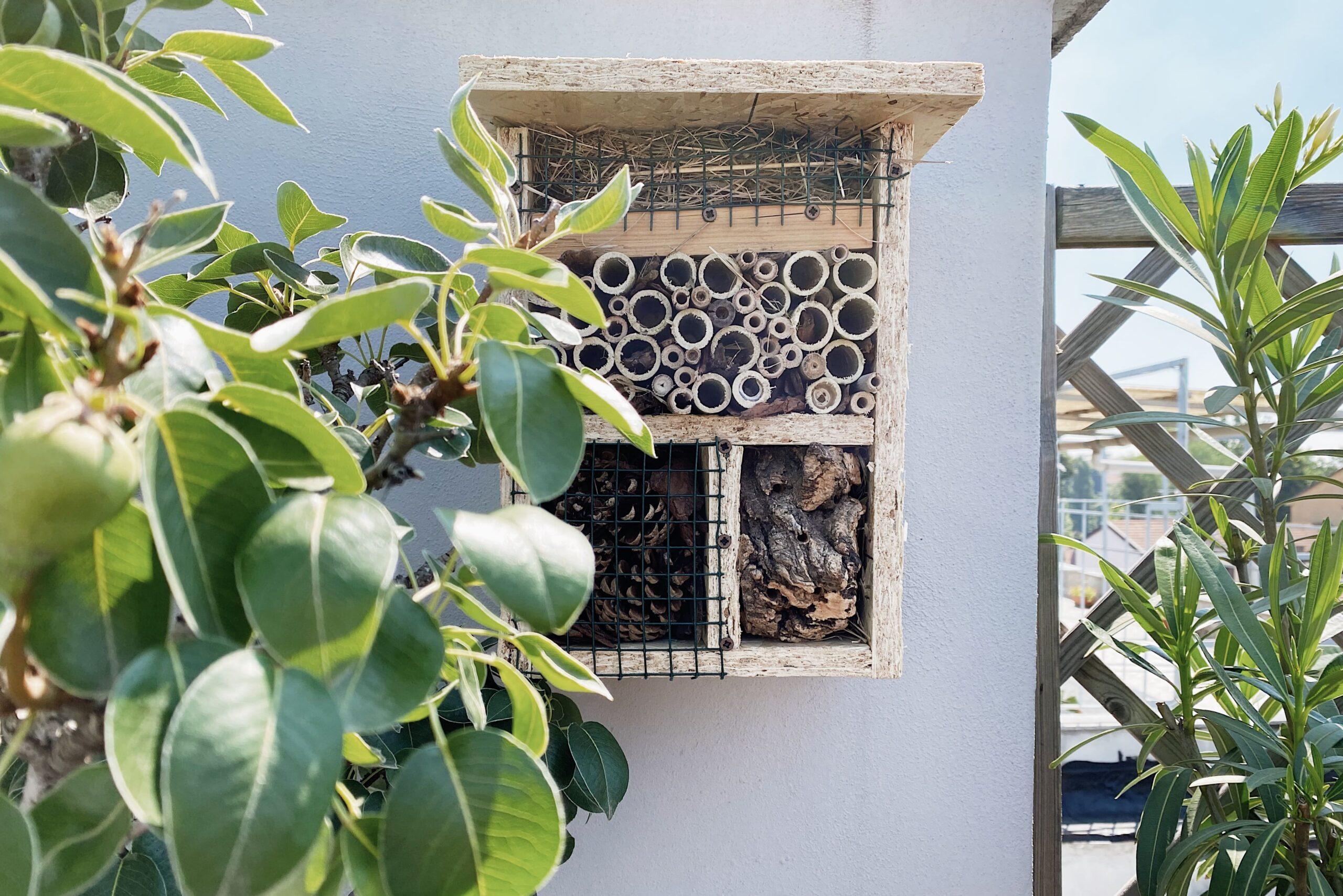 casetta per le api_I Giardini di Ellis