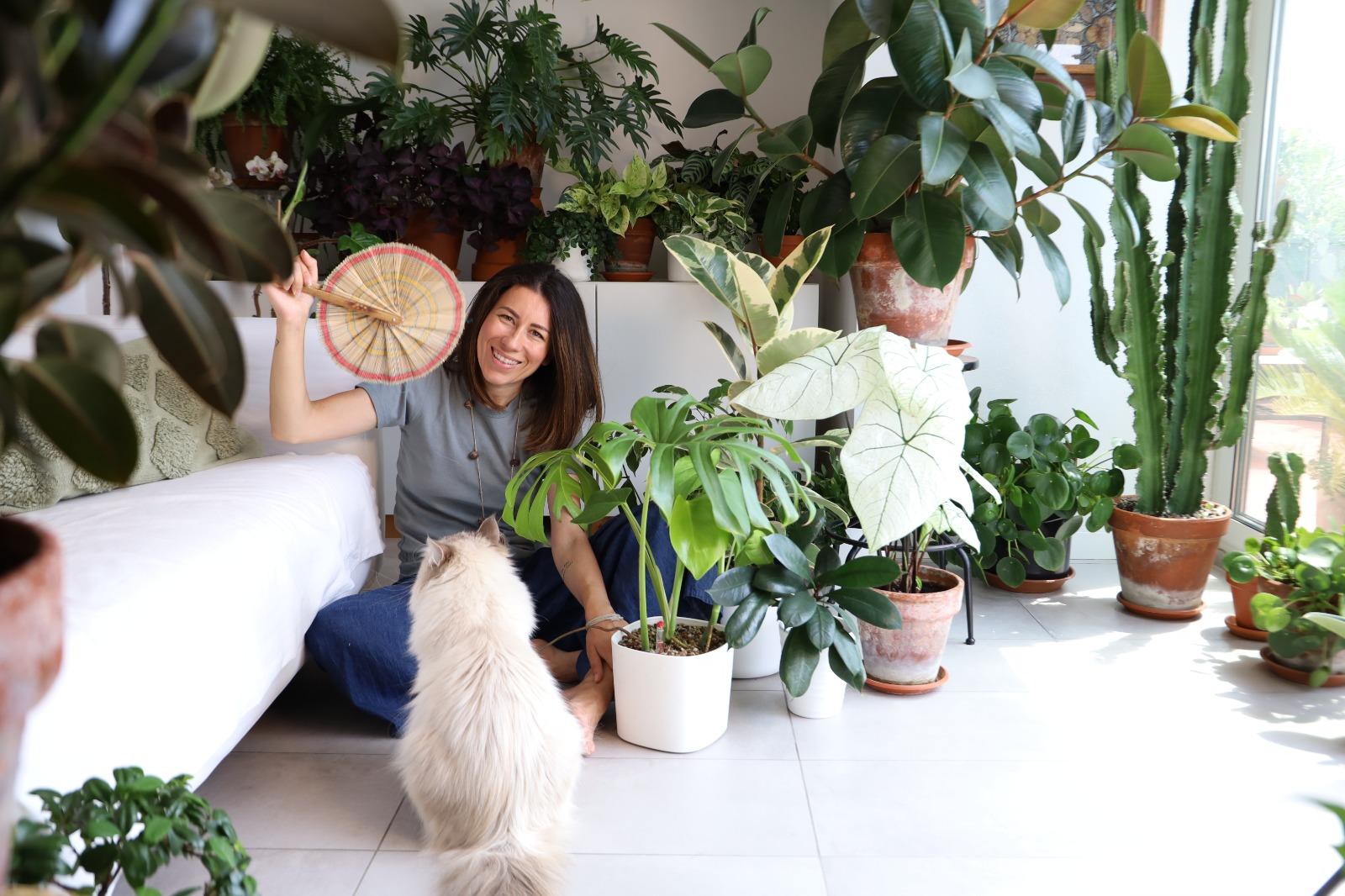 come curare le piante in estate