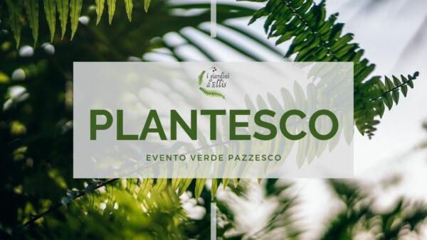 PLANTESCO