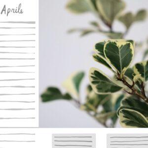 PLANTARIO_2022_calendario piante